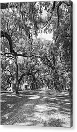Historic Lane Bw Acrylic Print by Steve Harrington