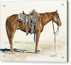 Hobbled Acrylic Print by Don Dane