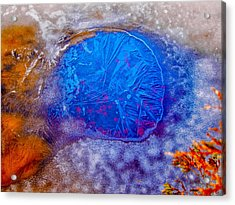Hole In The Ice Acrylic Print by Louis Dallara