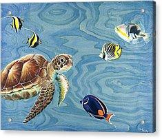 Holoholo Sea Turtle Acrylic Print by Emily Brantley