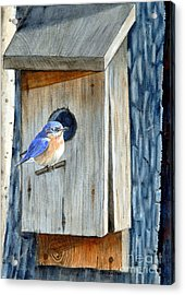 Home Again Acrylic Print by John W Walker