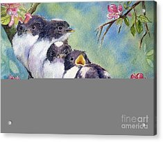 Home Alone Acrylic Print by Patricia Pushaw