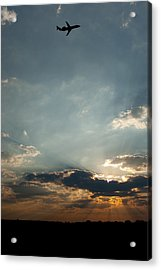 Home Bound  Acrylic Print by Paul Job