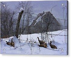 Home Through The Snow Acrylic Print by Ron Jones