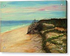 Honeymoon Island Florida Acrylic Print by Gabriela Valencia
