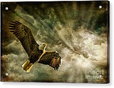 Honor Bound In Blue Acrylic Print by Lois Bryan
