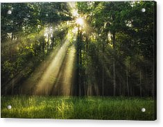 Hope Eternal Acrylic Print by Andrew Soundarajan
