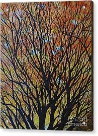 Hope Reaches Acrylic Print by Lori Kallay