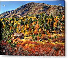 Hope Valley Fall Color Acrylic Print by Scott McGuire