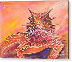 Horny Toad Acrylic Print by Summer Celeste