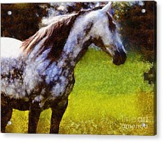Horse And I Will Wait For You Acrylic Print by Janine Riley