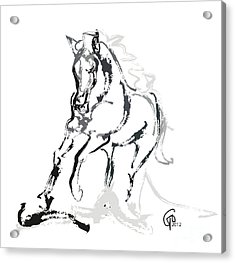 Horse- Andalusian Angel Acrylic Print by Go Van Kampen