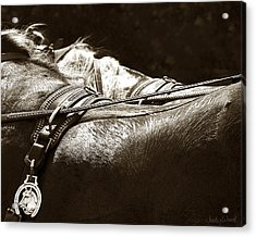 Horse Brass Acrylic Print by Judy Wood