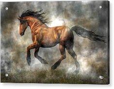 Horse Acrylic Print by Daniel Eskridge