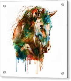 Horse Head Watercolor Acrylic Print by Marian Voicu