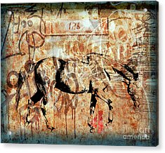 Horse One Twenty Six Acrylic Print by Judy Wood