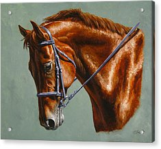 Horse Painting - Focus Acrylic Print by Crista Forest