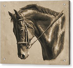 Horse Painting - Focus In Sepia Acrylic Print by Crista Forest