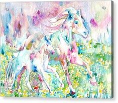 Horse Painting.17 Acrylic Print by Fabrizio Cassetta