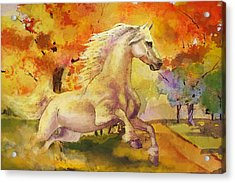 Horse Paintings 003 Acrylic Print by Catf