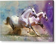 Horse Paintings 004 Acrylic Print by Catf