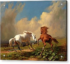 Horses Balking At Approaching Storm Acrylic Print by Rudolf Koller