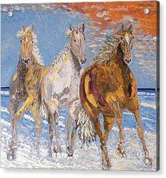Horses On The Beach Acrylic Print by Vicky Tarcau