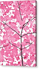Hot Pink Leaves Melody Acrylic Print by Jennie Marie Schell