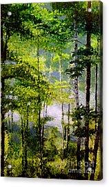 Wisconsin Birch Trees On Lake  Acrylic Print by Lisa Alex Gray