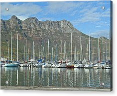 Hout Bay Acrylic Print by Tom Hudson