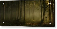 How Can Words Express The Feel Of Sunlight In The Morning Acrylic Print by Norbert Maier