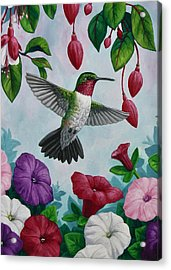 Hummingbird Greeting Card 2 Acrylic Print by Crista Forest