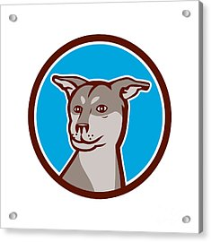 Husky Shar Pei Cross Dog Head Cartoon Acrylic Print by Aloysius Patrimonio