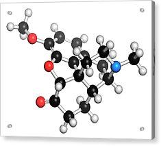 Hydrocodone Narcotic Analgesic Drug Acrylic Print by Molekuul