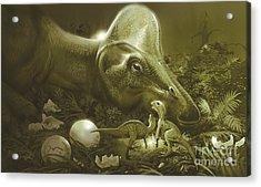 Hypacrosaurus Protecting Its Nest Acrylic Print by Jan Sovak