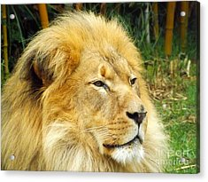 I Am King Acrylic Print by Clare Bevan