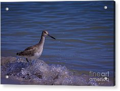 I Can Make It Acrylic Print by Marvin Spates