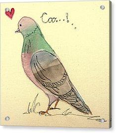 Pigeon Fancier Acrylic Print by Hazel Millington