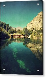I See Right Through Acrylic Print by Laurie Search