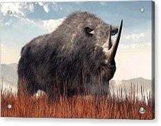 Ice Age Rhino Acrylic Print by Daniel Eskridge