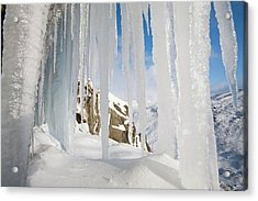 Icefall Acrylic Print by Ashley Cooper