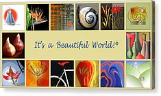 Image Mosaic - Promotional Collage Acrylic Print by Ben and Raisa Gertsberg
