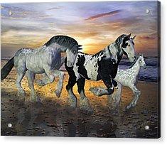 Imagination On The Run Acrylic Print by Betsy C Knapp