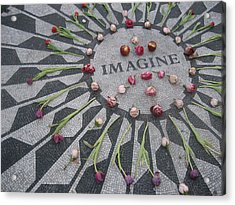 Imagine Acrylic Print by Kendell Timmers