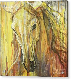 Impetus Acrylic Print by Silvana Gabudean