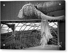 In An Abandoned Mushroom Farm Bw Acrylic Print by RicardMN Photography