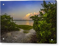 In Coming Tide Acrylic Print by Marvin Spates