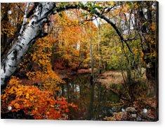 In Dreams Of Autumn Acrylic Print by Kay Novy