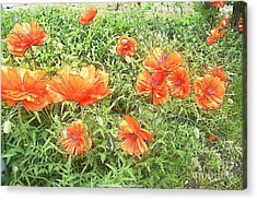 In Flanders Fields The Poppies Grow Acrylic Print by PainterArtist FIN