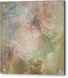 In Full Bloom Acrylic Print by Jean Moore